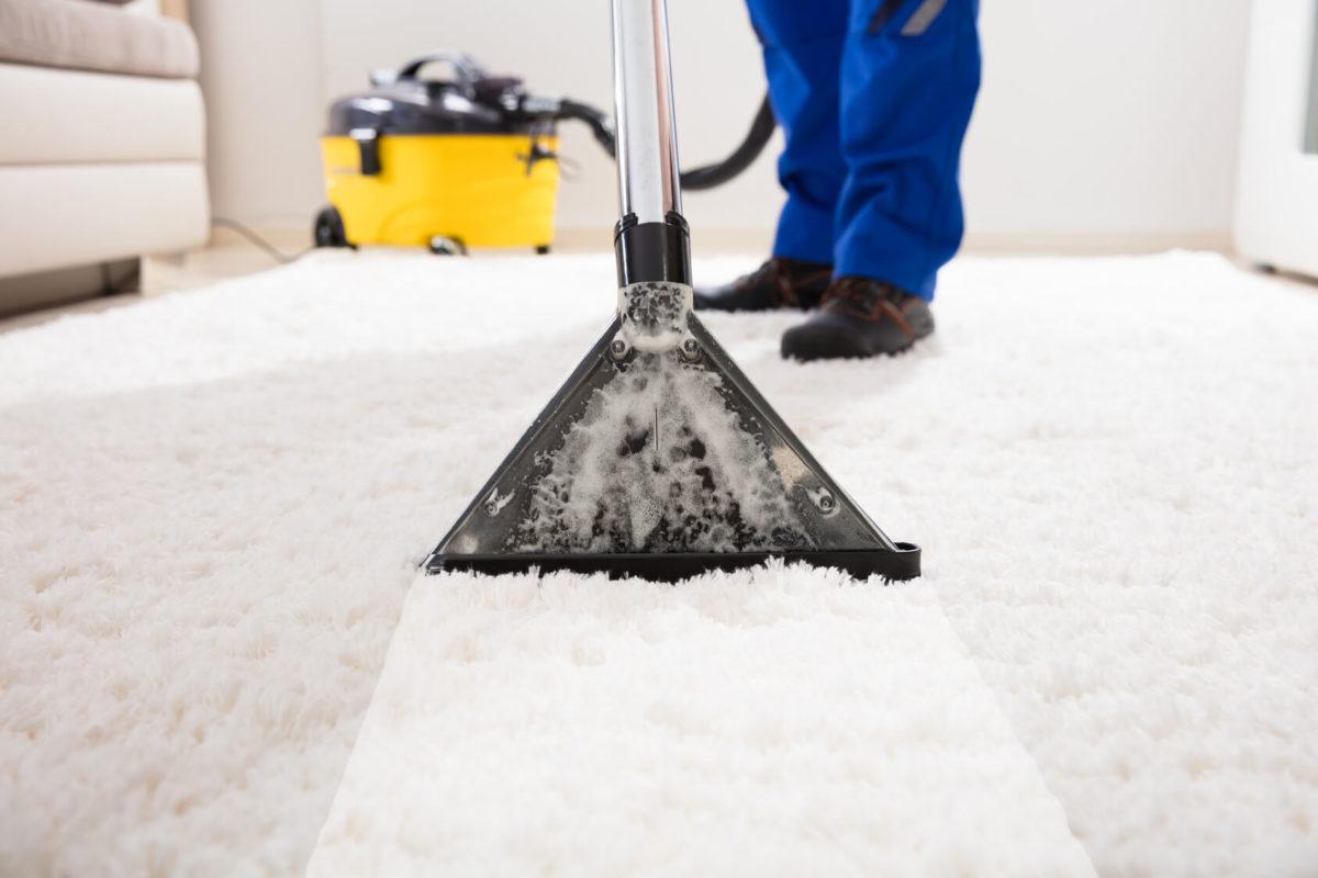 Shampouinage et nettoyage moquette entreprise bureaux maison appartement rennes nantes saint malo redon vitré fougères